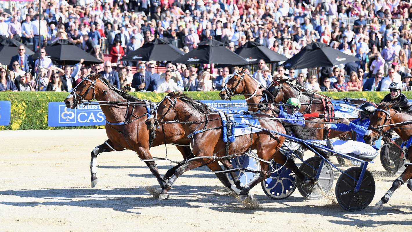 New Zealand Trotting Cup recap: Sunshine, horses and fashion ...