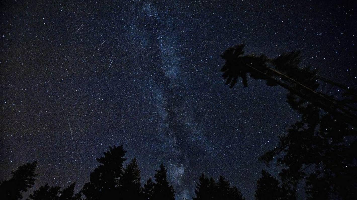 Leonids meteor shower will send green shooting stars across the sky