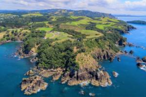 New Zealand's coastline doesn't get much better than this headland at Leigh, where a 26ha block has been listed for sale.