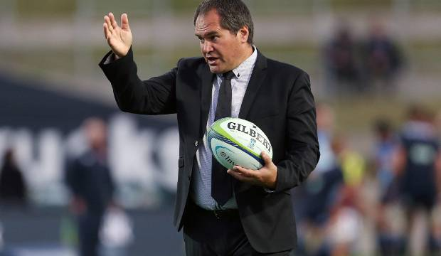 New Zealand Rugby knew Dave Rennie was talking to Rugby Australia on Wallabies job