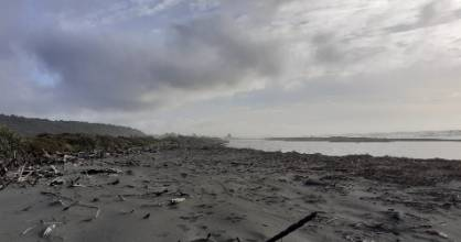 A woman was swept out to sea after crashing her car and walking into a river on the West Coast, then was washed ashore ...