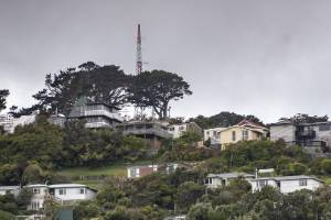 Trying to find a decent affordable house in Wellington is a hard slog.