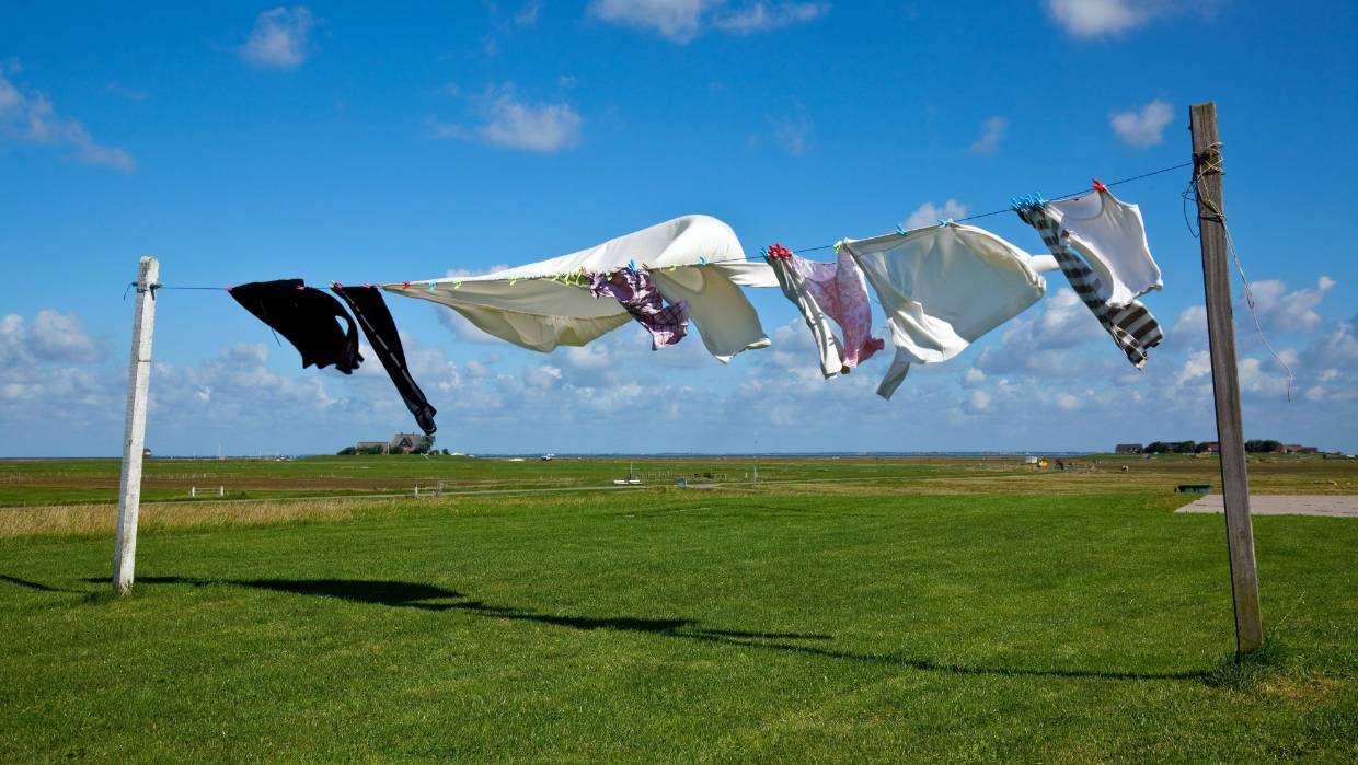 "Hanging washing out to dry produces ""a rebirth that you just don't get from the tumble-dryer,"" Joe Bennett writes."