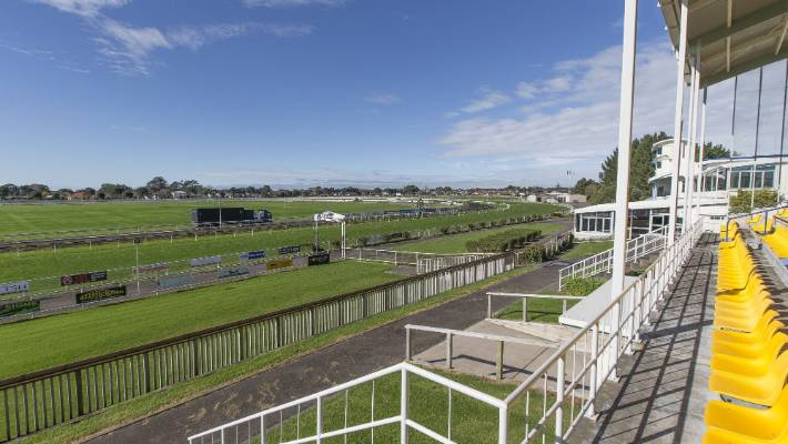 Sixteen sports codes are happy witht he suggestion a multisport hub is developed at New Plymouth's racecourse.