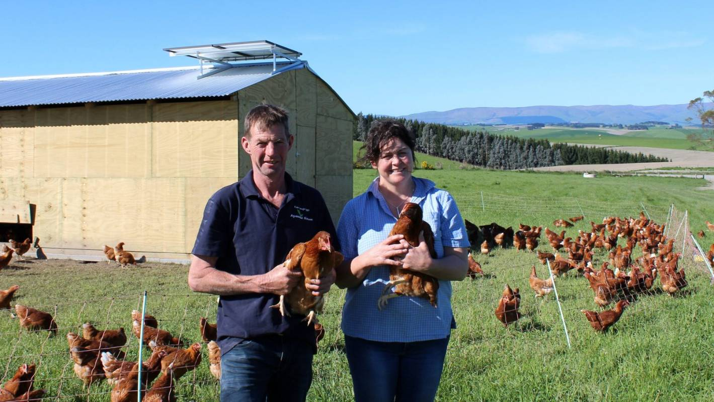 Balclutha hens rule the roost on Country Calendar