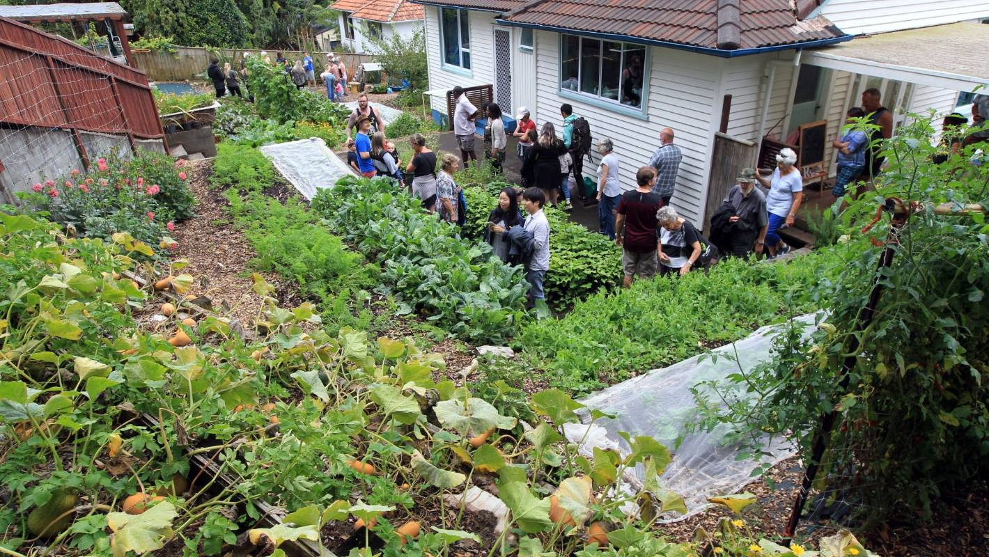 Urban farm tour proves popular in New Plymouth