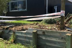 A man was restrained by members of the public after he crashed into a Raumati property.