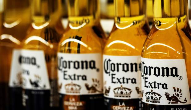 'Corona beer virus' searches show brewer can't evade coronavirus