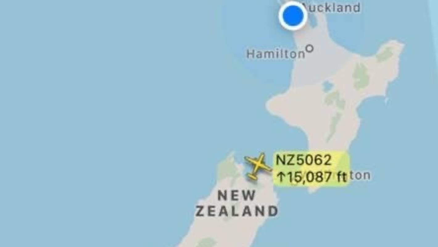 It's rush hour in New Zealand skies