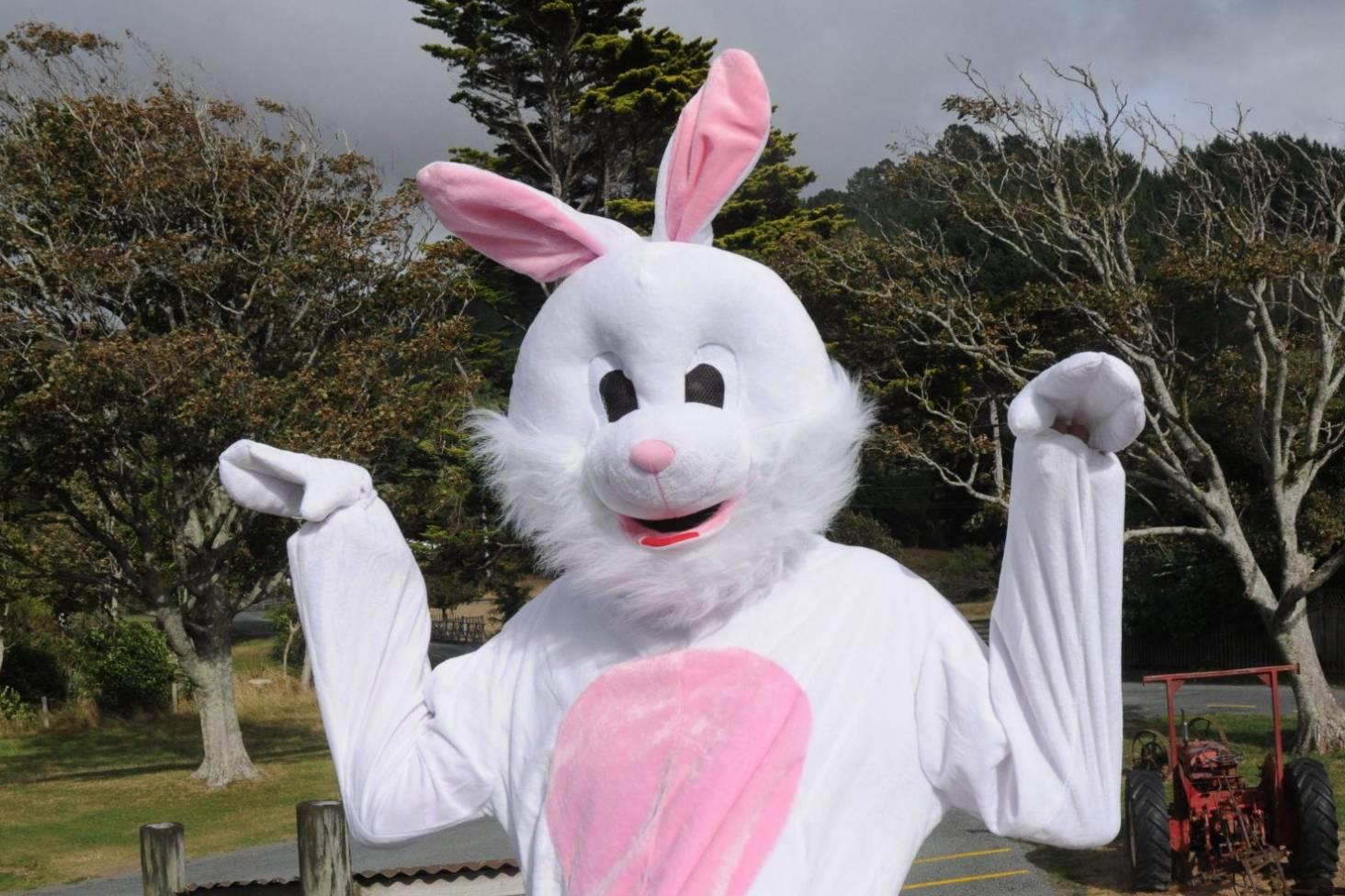 Easter Rabbit Fairy Door Easter Bunny Door Hunt Kids Gift NEW Easter Kit