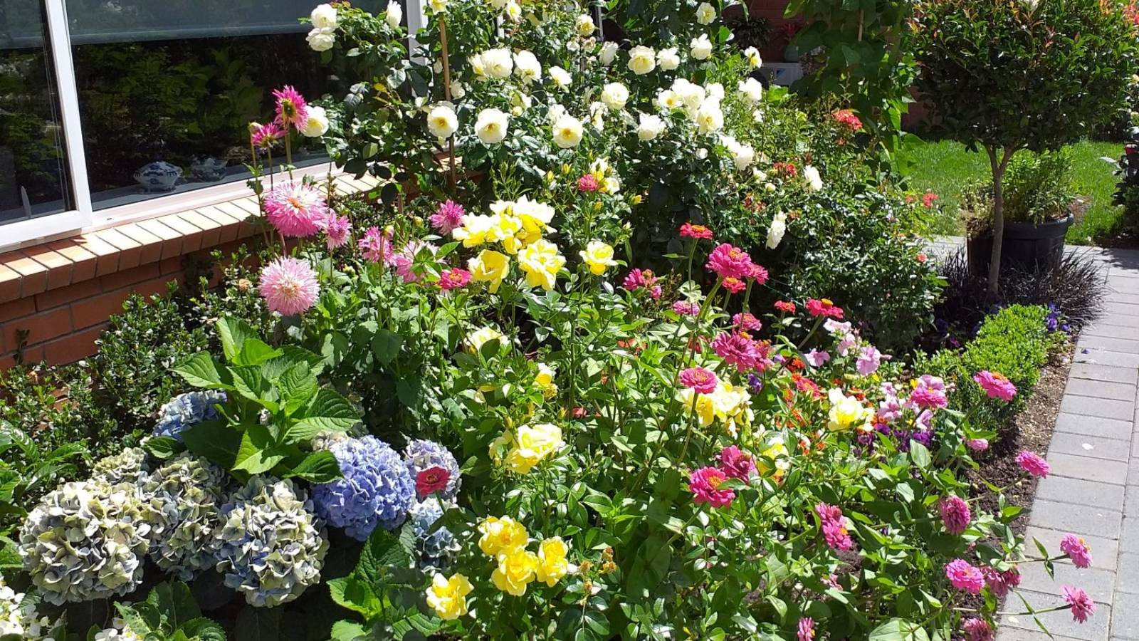 The world's your garden
