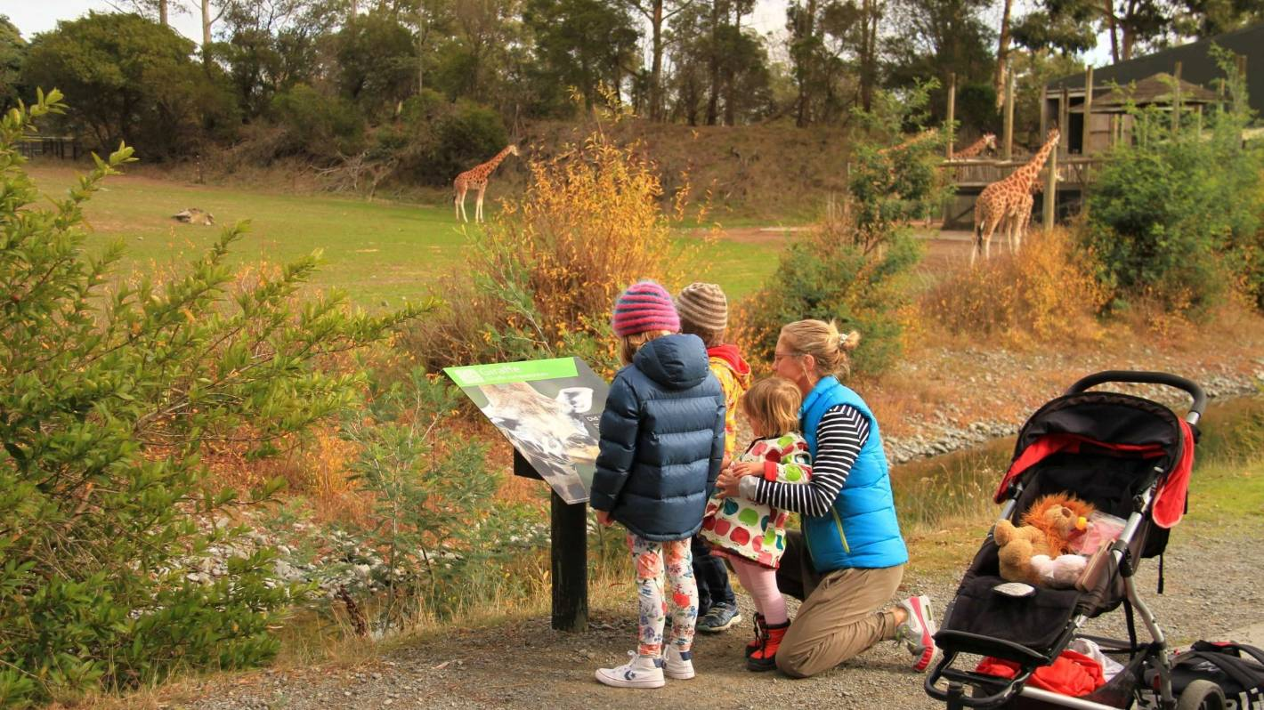 All you need to know for the winter school holidays in Canterbury