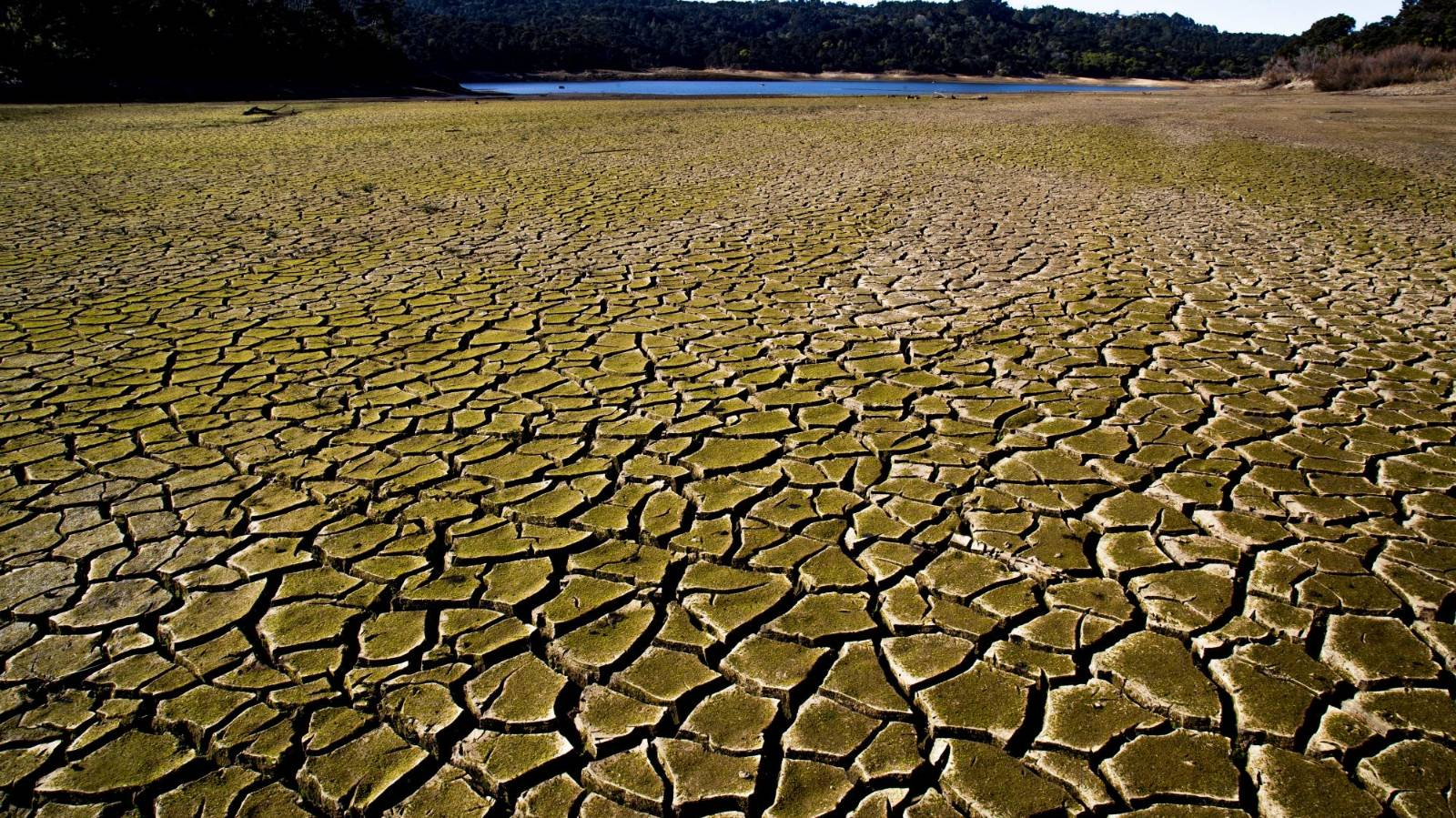 Are Auckland's water woes 'just a drought'?