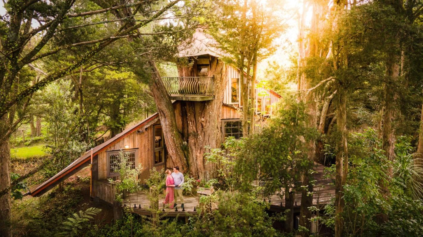 New Zealand's secret tree house escape