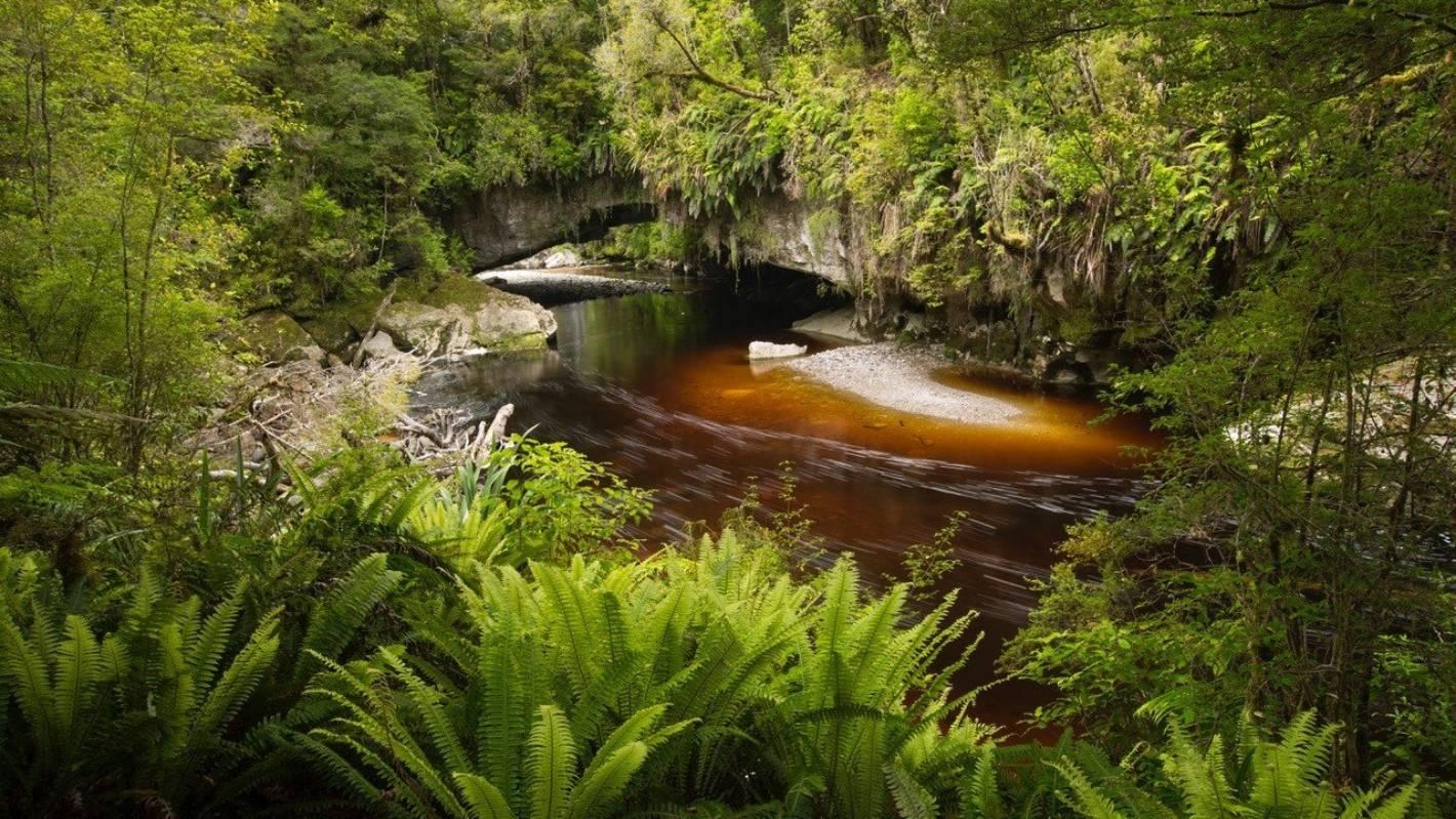Drop insulting plans for the beautiful Ōpārara Basin