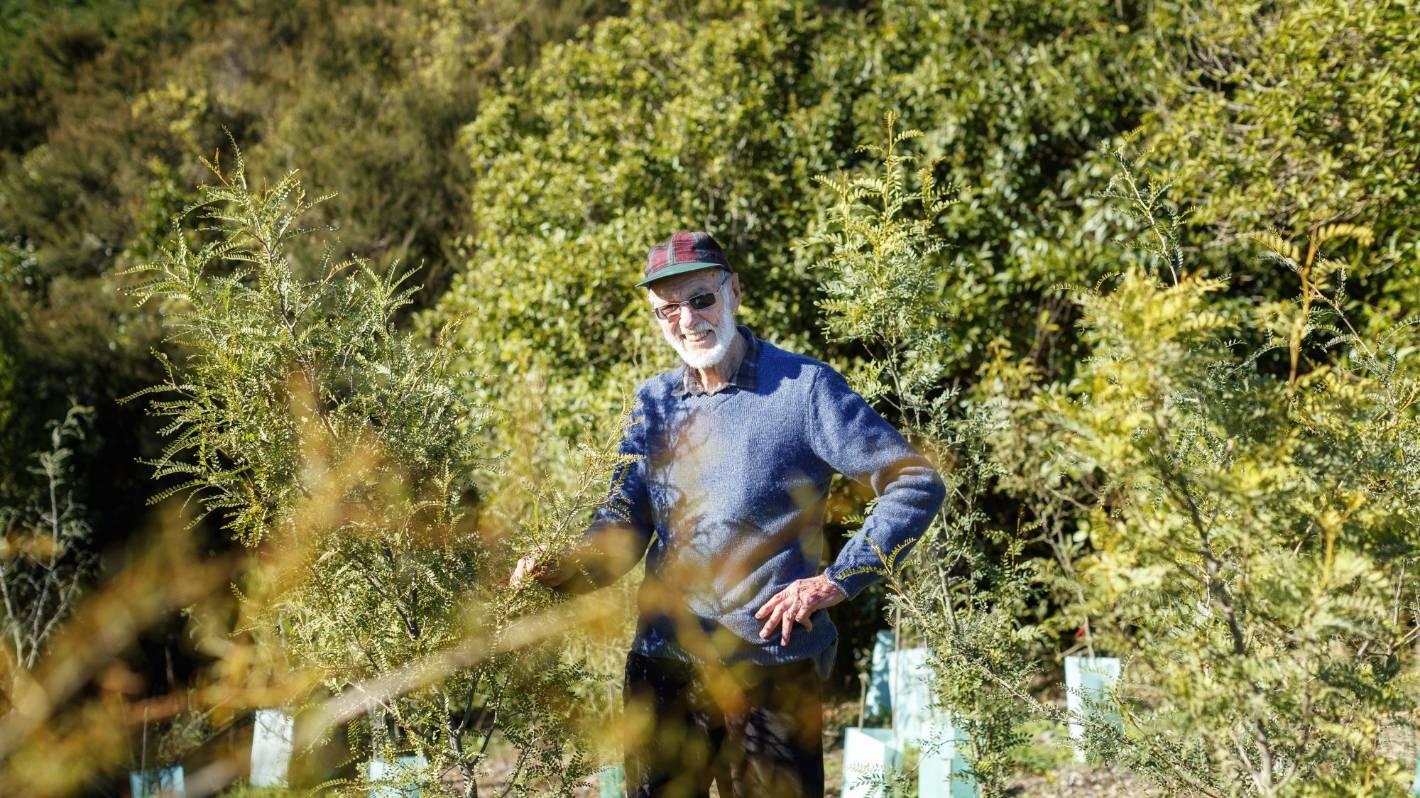 Conservationist's decades-long work restoring local habitat recognised