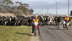 Farmers hit the road for Moving Day