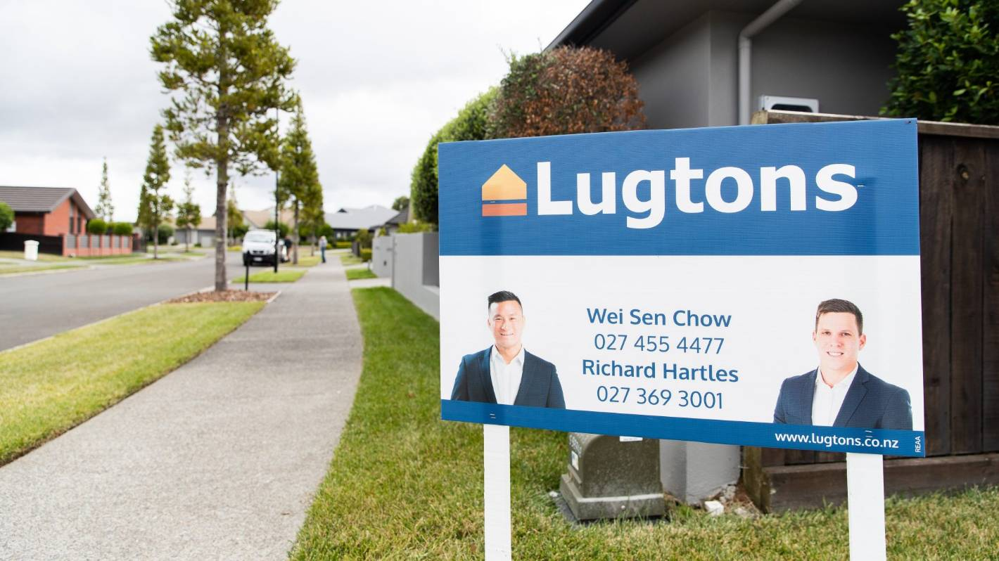 Waikato property market shows no signs of Covid-19 hangover