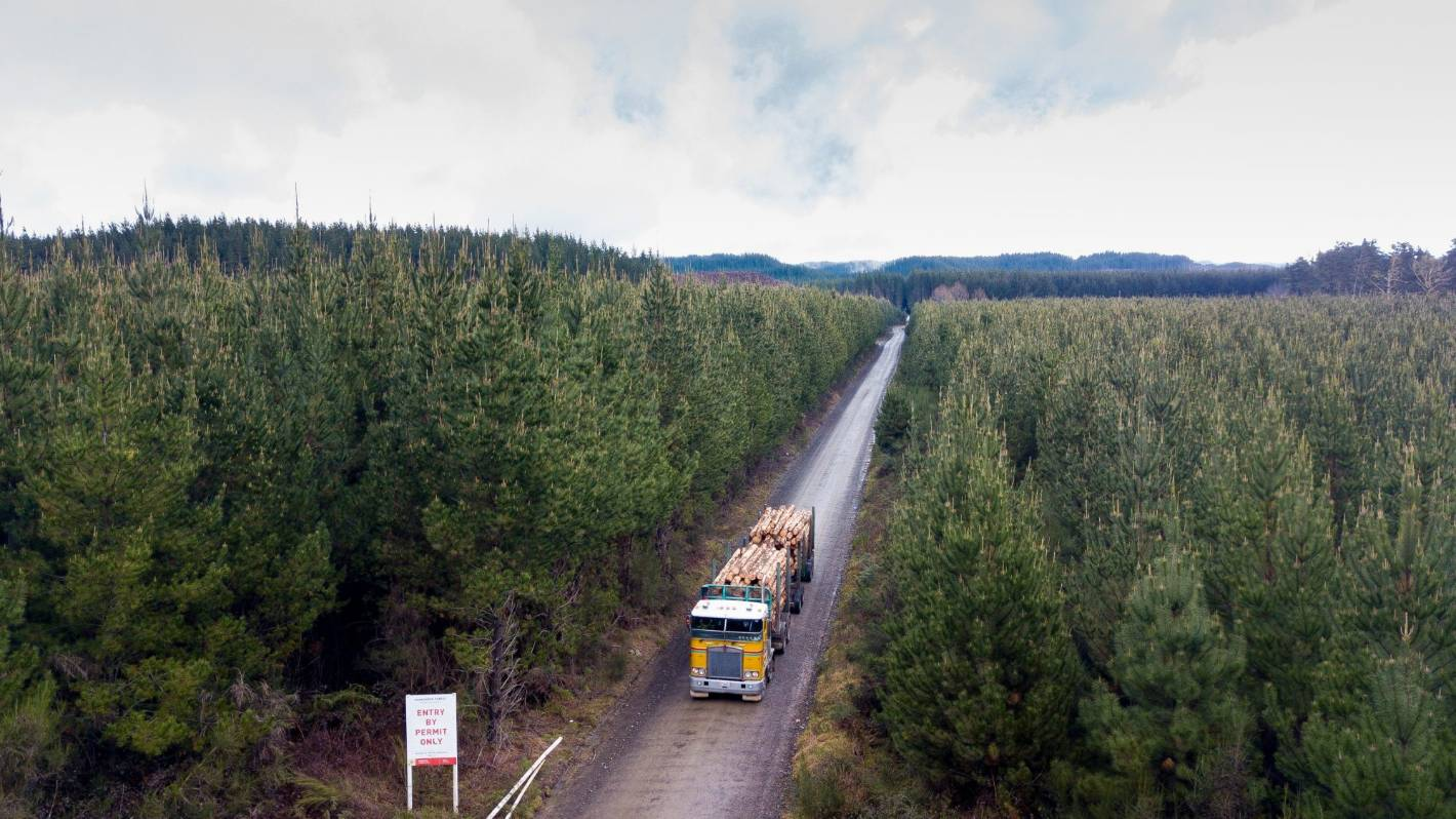 stuff.co.nz - Forest owners group says industry will save rural communities