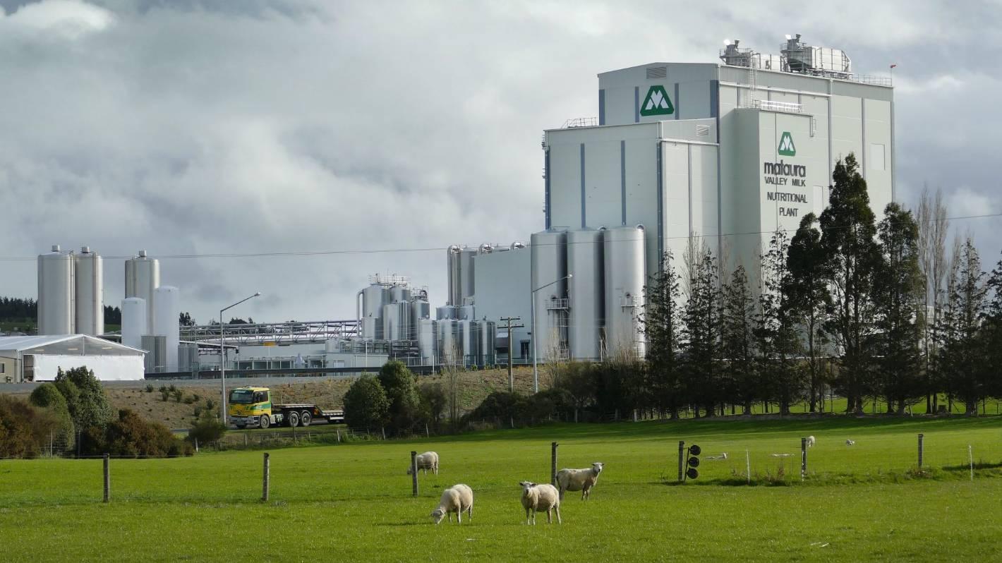 Mataura Valley Milk needs more money to stay afloat