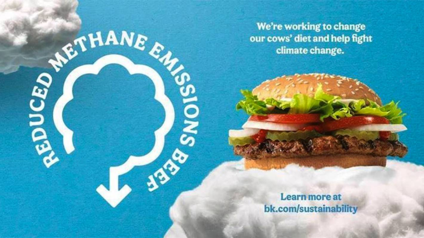 Can Burger King Stack Up Its Low Methane Whopper Claims Stuff Co Nz