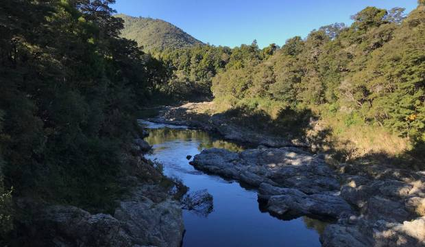 Project to restore water quality in Marlborough Sounds 'not about farmer bashing', says councillor
