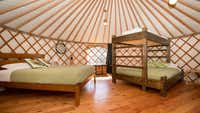 Luxury camping Mongolian style in Wanaka