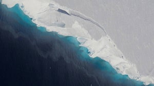 Melting Antarctic ice sheets will cause near 30cm sea level rise if nothing is done