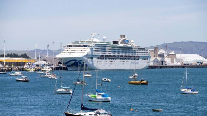 Port of Tauranga doesn't expect cruise ships to visit for the next two summers.