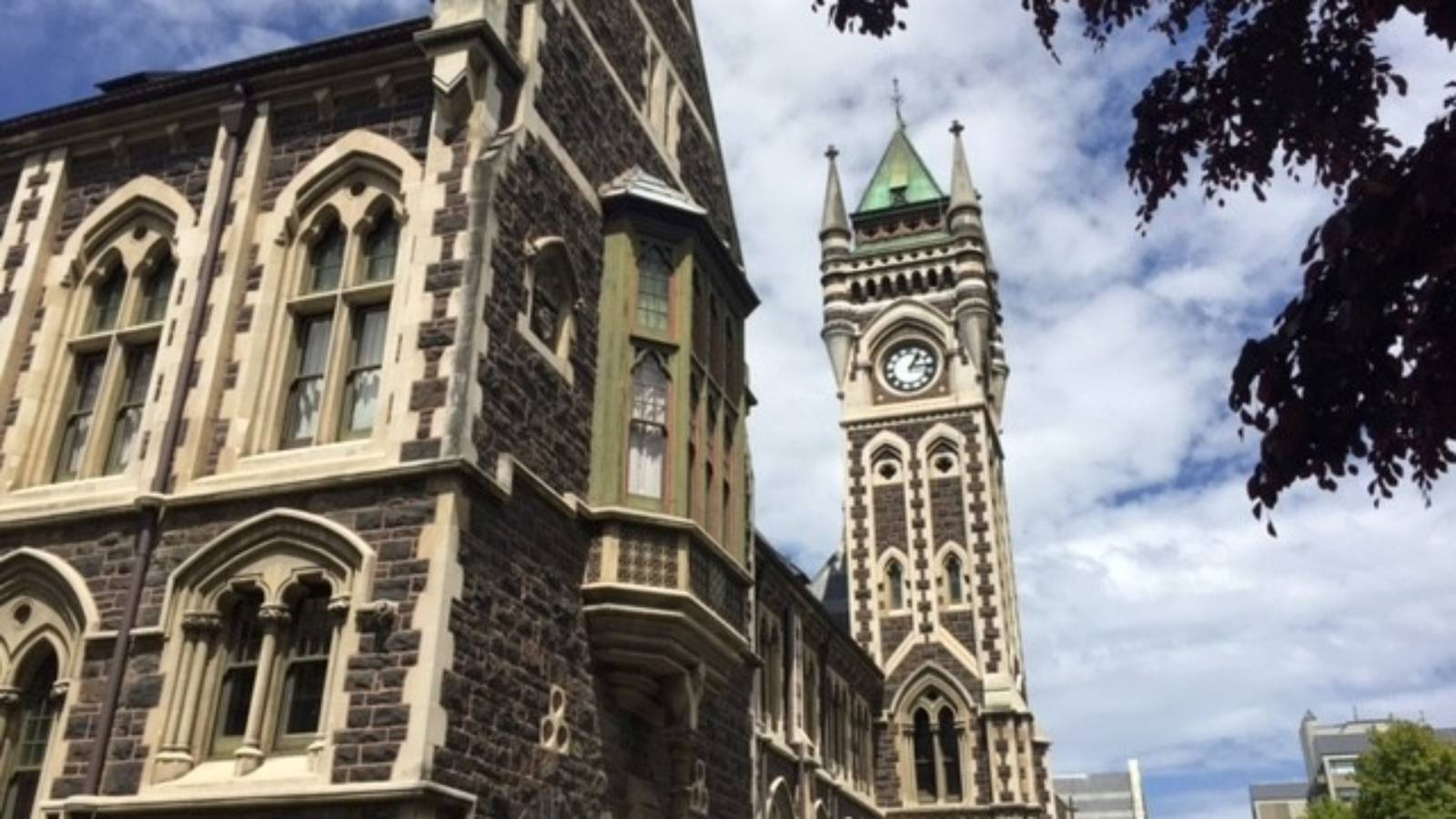 How to spend a day in Dunedin on a $50 budget