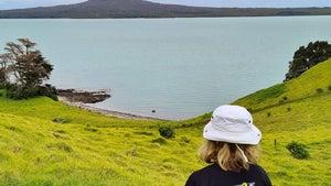 Motukorea/Browns Island: Mt Eden's views without the crowds