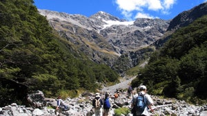 A guide to Arthur's Pass National Park