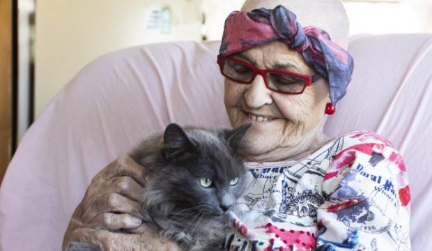 Dying Auckland woman's final wish to find homes for her 23 special needs cats