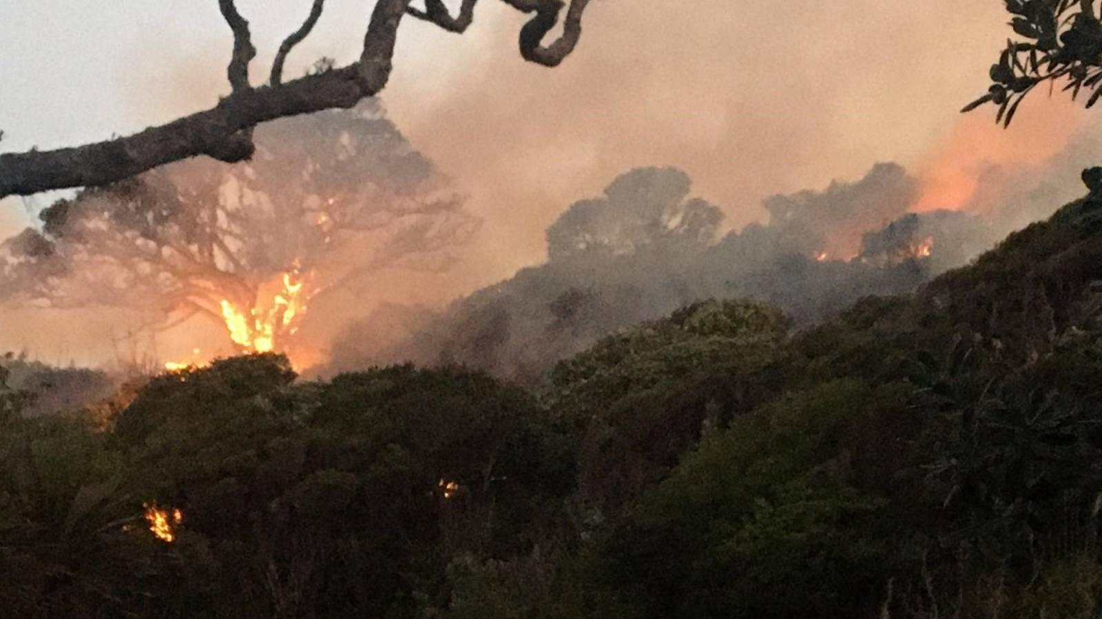 Suspicious fire burns through native bush in Northland, threatening homes
