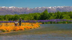 Fly fishing in the South Island's most beautiful spots