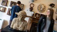 The best museums in Dunedin and Ōamaru