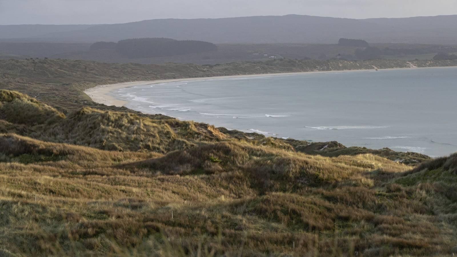 Chathams marine heatwave tests forecast