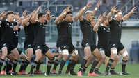 Kiwis 'would snap up rugby shares'