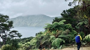 Helen Clark: Put Queen Charlotte Track on top of staycation list