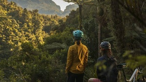Why you should visit the Paparoa National Park this summer