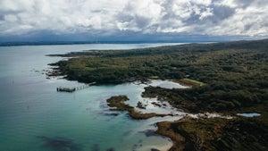 Auckland's Motutapu Island to host new festival