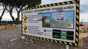 Cape Kidnappers beach trip business reopens with rockfall warnings