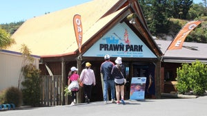 When prawn fishing stalls you have to adapt - Huka Prawn Park co-owner
