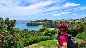 Why e-biking is the best way to explore Waiheke Island