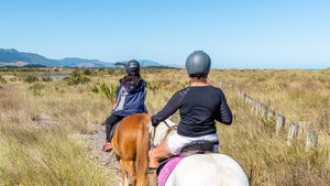 Why riding along the Kāpiti Coast was the most fun I've had in ages