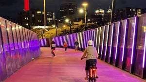 The delights of Auckland by night? It's no sweat on an e-bike