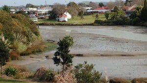 Explore our nation's past and natural wonders in a day at Waiuku