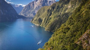 Kiwis quick to snap up $1 Milford Sound cruises
