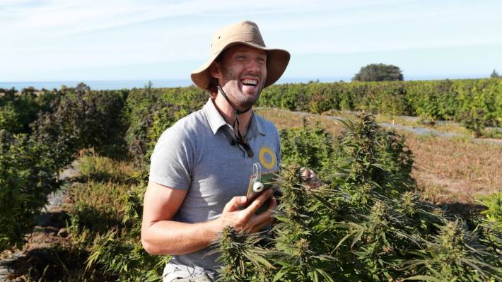 Puro cultivation technician Max Jablonski uses a microscope attached to his phone camera.
