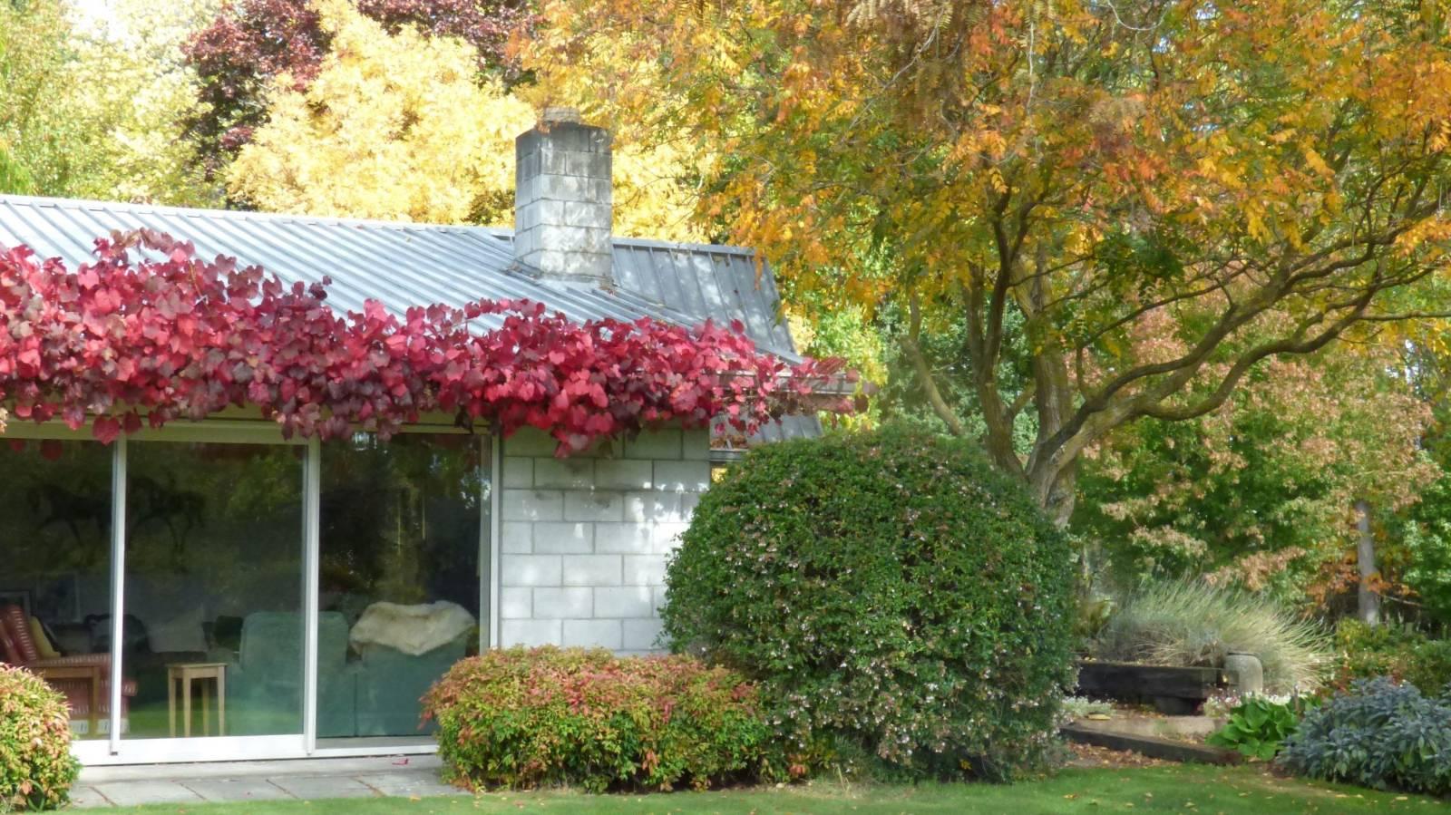 Step inside a centuries-old garden in full autumn bloom